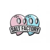 Salt Factory